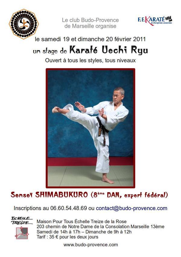 Stage de Karaté Uechi Ryu avec Maître Shimabukuro – Marseille – 19 et 20 février 2011