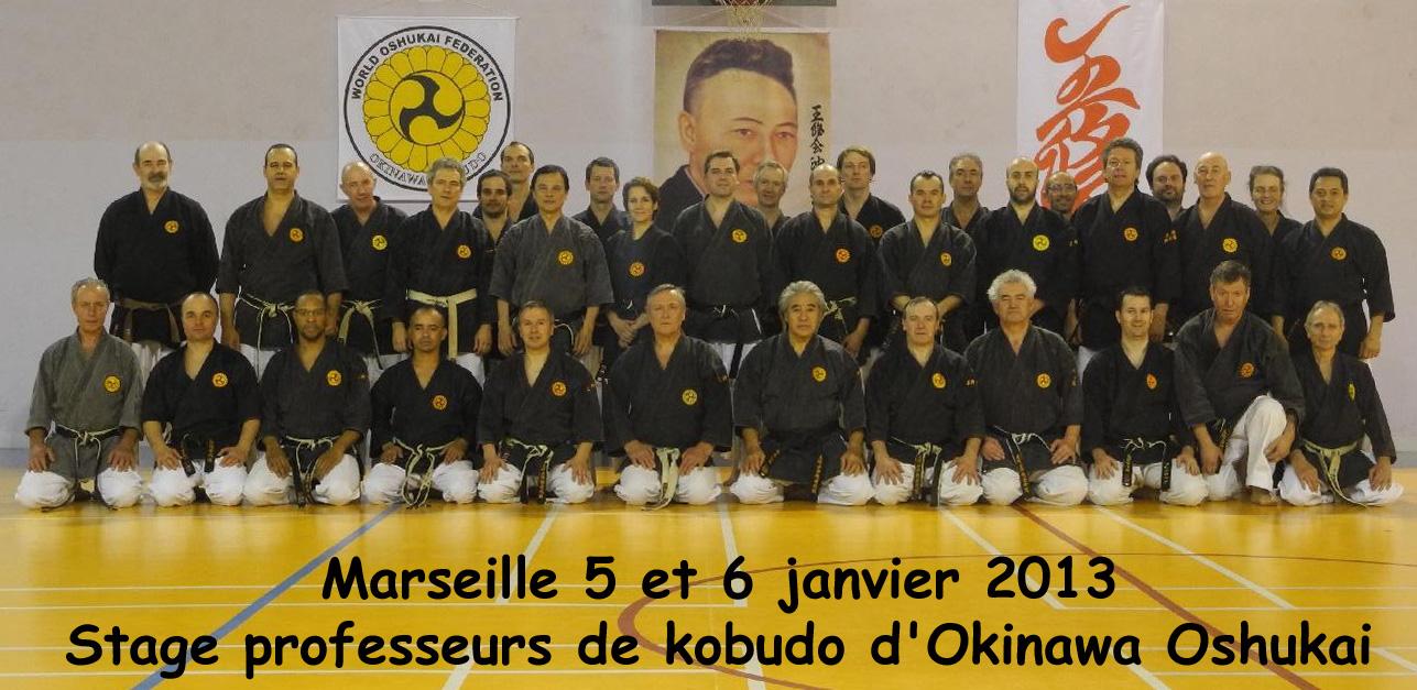 Stage professeurs de Kobudo à Marseille les 5 et 6 janvier 2013