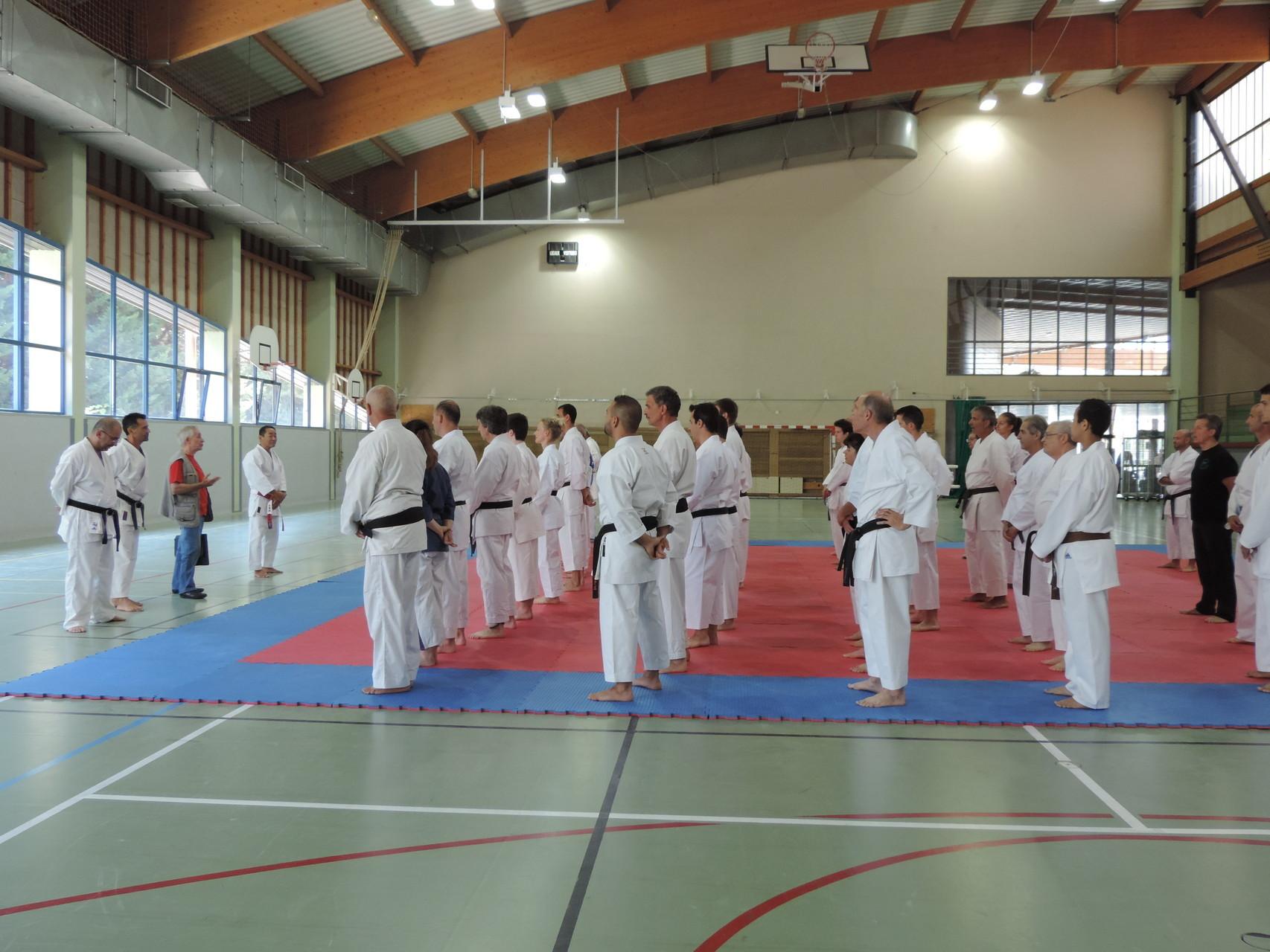 Stage d'été 2015 multistyles de Karaté avec les experts Japonais