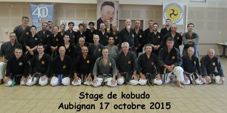 Stage de Kobudo à Aubignan le 17/10/2015