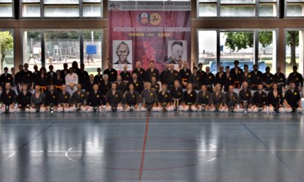 Stage international de Kobudo Oshukaï – Thonon les Bains – Juillet 2017