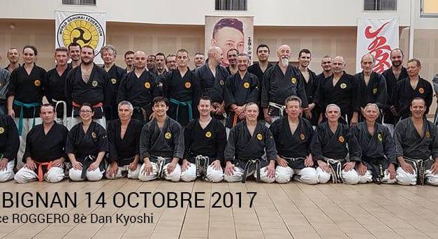 Stage de Kobudo à Aubignan le 14 octobre 2017