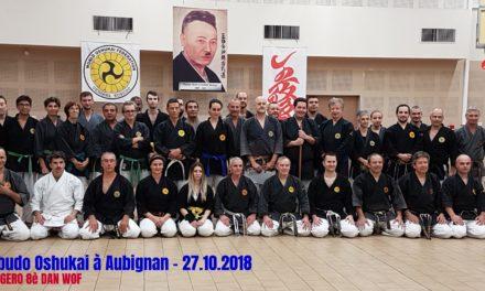 Stage de Kobudo à Aubignan le 27 octobre 2018