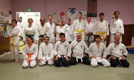 Cours commun de Wu Dao et Karaté